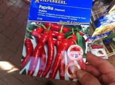 Hybrid Peperoni Saatgut